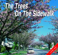 The Trees On The Sidewalk