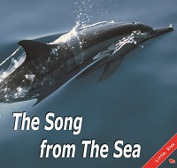 The Song from The Sea